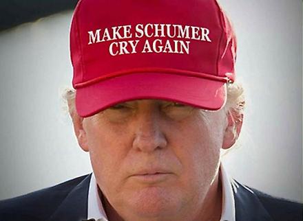 make-schumer-cry-again