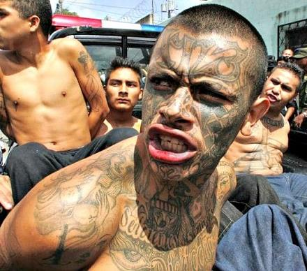 ms-13-gangster