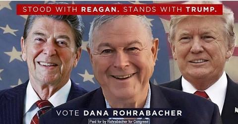 vote-dana