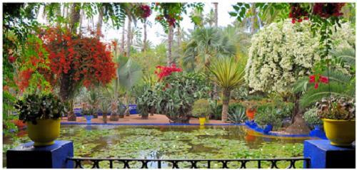 gardens-of-marrakesh