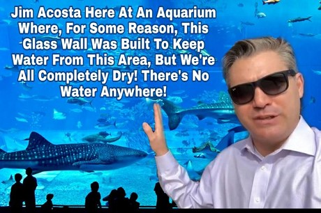 jim-acosta-at-aquarium
