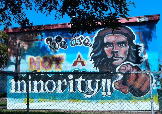 not-a-minority