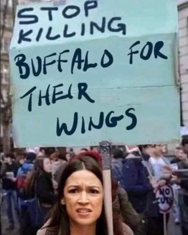 stop-killing-buffalo