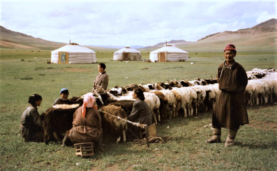 mongol-nomads