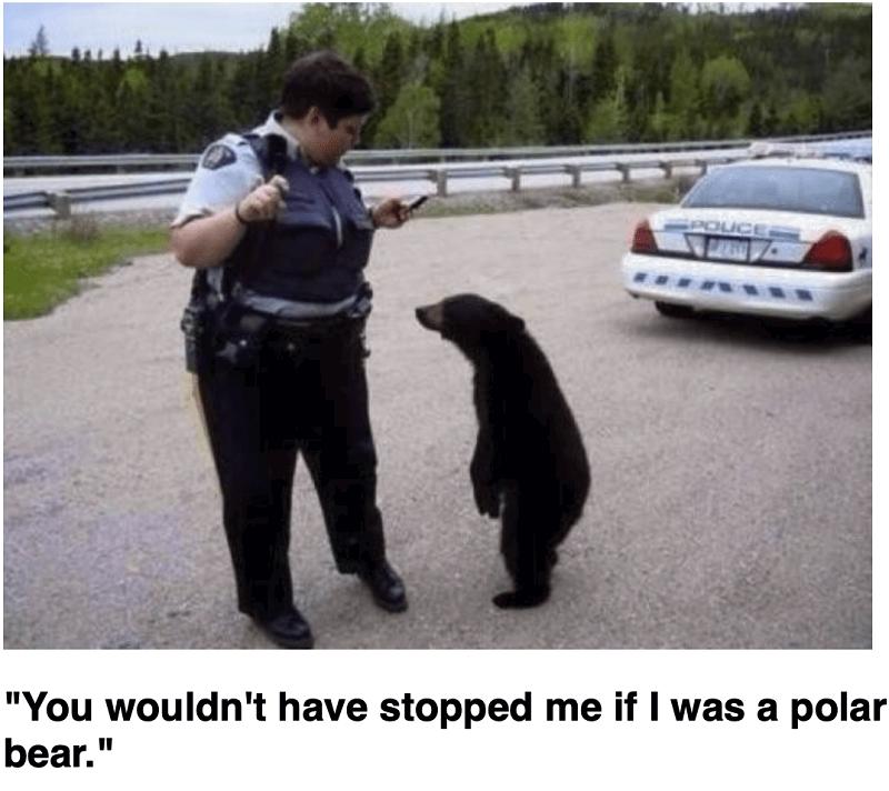 white-supremacist-cop-on-bear