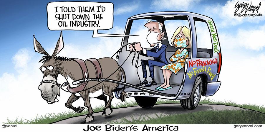 bidens-america