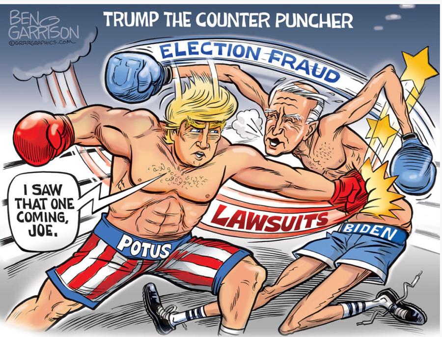 trump-against-election-fraud