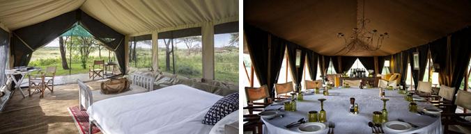 serengeti-camp-accommodations