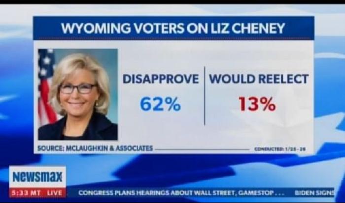 lizcheney-votes-in-wy