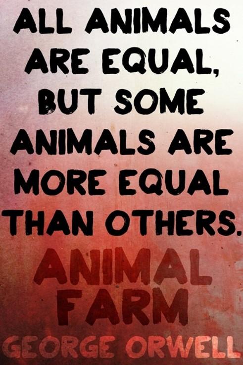 animal-farm-equality