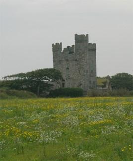 ballyteige-castle