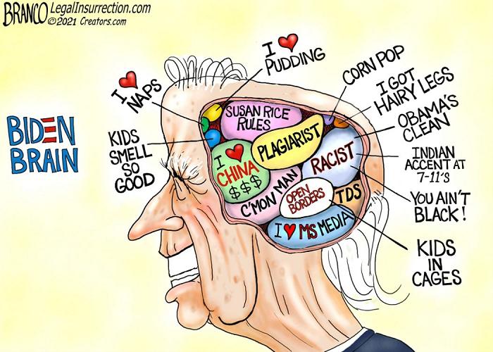 biden-brain