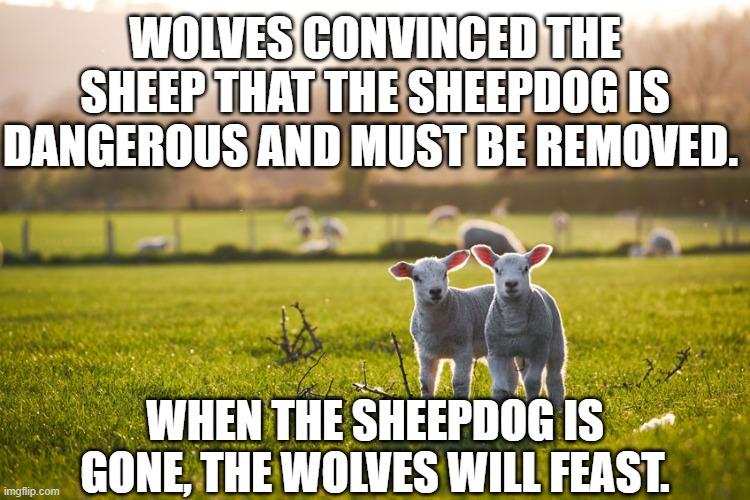 sheepdog-begone