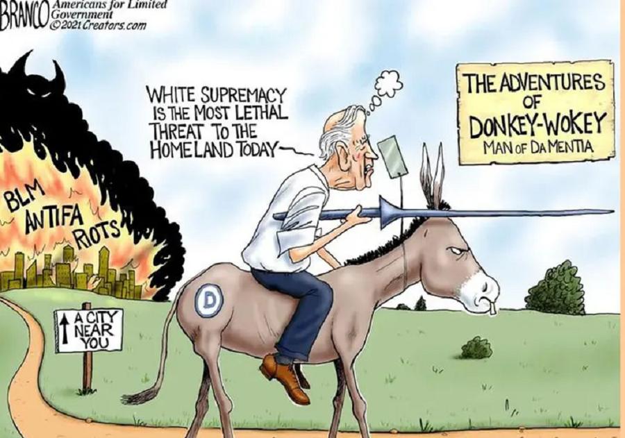 donkey-wokey