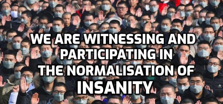 normal-insanity