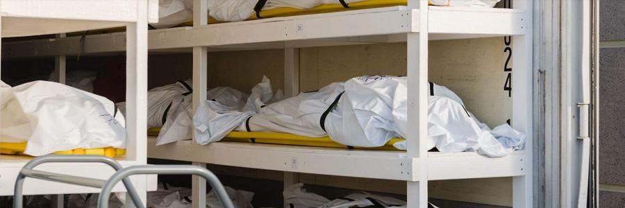 bunk-vaccine-deaths