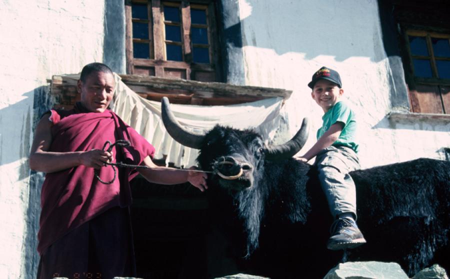 yak-riding-at-rangdum